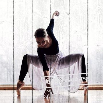 балет5