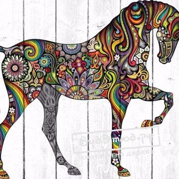 лошади5